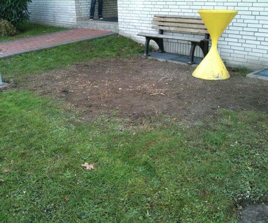 Gartengestaltung Wieneke Uslar Referenzen Vorher Nachher